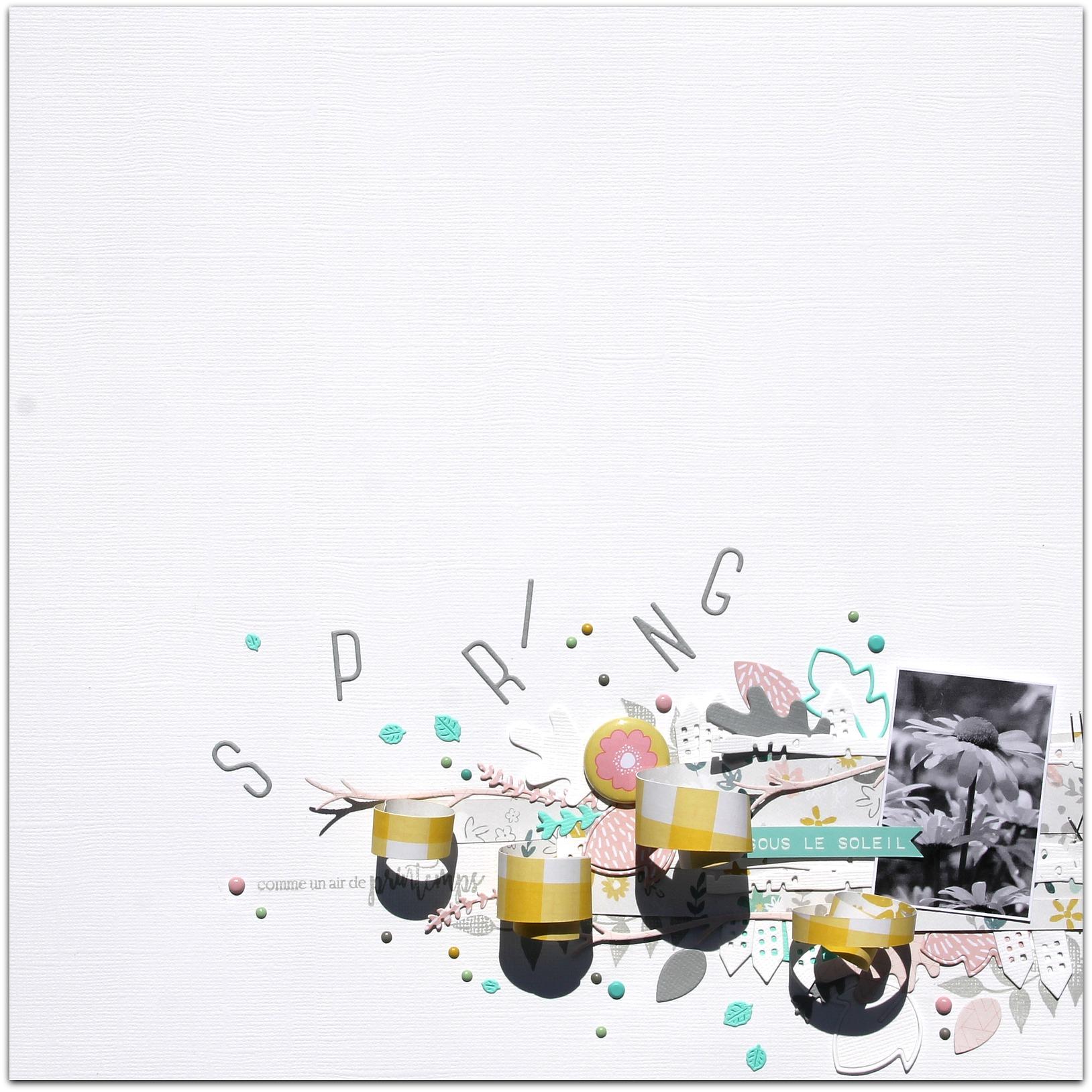 Page de Zélie pour CDS
